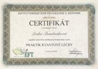Praktik kvantové léčby - certifikovaný výcvik