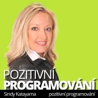 Pozitivní programování